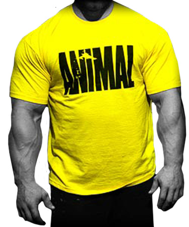 UNIVERSAL NUTRITION T-SHIRT - ANIMAL ICONIC YELLOW